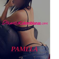 Pamela, Hermosa chica con cuerpo espectacular y prepago con apartamento